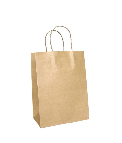 Twisted Handle Paper Bags Small - EcoBags