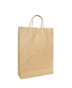 Twisted Handle Paper Bags Medium - EcoBags